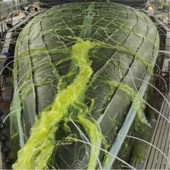 Infusion Vinylester resin 4 kg